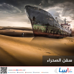 سفن الصحراء