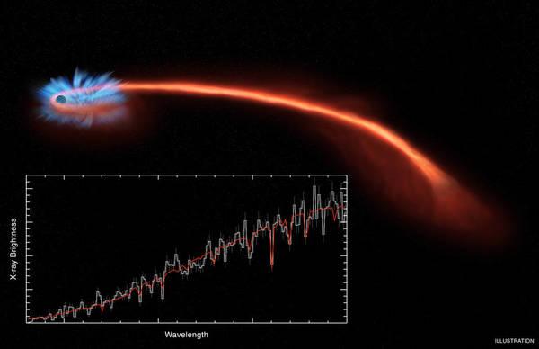 بينما تهوي المادة المكونة للنجوم داخل الثقب الأسود، تنبعث منها أشعة سينية (أشعة إكس). تُظهر الأجهزة بياناتٍ جُمِعت بواسطة ثلاثة تلسكوبات، حيث يشير المحور العمودي إلى شدة سطوع الأشعة السينية، بينما يشير المحور الأفقي إلى طول الموجة. المصدر: NASA/CXC/U. Michigan/J. Miller et al.; Illustration: NASA/CXC/M. Weiss
