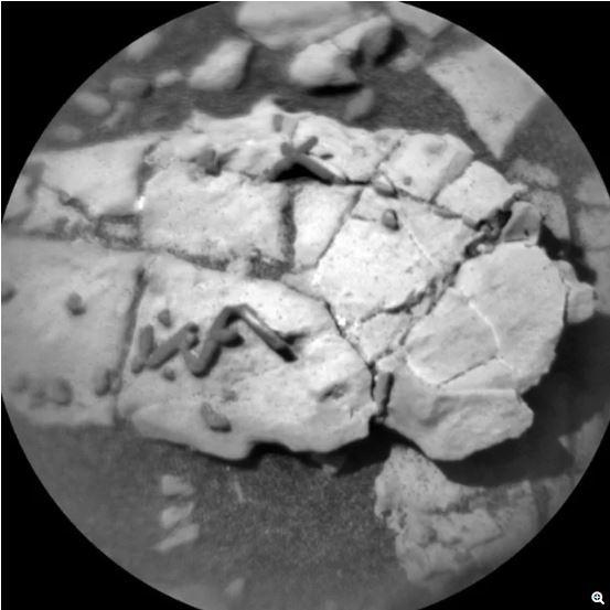 (صورة دقيقة التقطتها كاميرا ChemCam للتضاريس الجديدة التي تشبه العصا، التُقِطت في 31 كانون الأول/ديسمبر 2017، حقوق الصورةNASA/JPL-Caltech/LANL