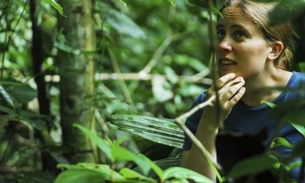 راقبت البروفيسورة المشاركة ميغان فريدريكسون من جامعة تورونتو النمل في الأمازون البيروڤي. حقوق الصورة: جي آي ميللير