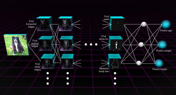 توضيح لآلية عمل الشبكة العصبية.