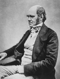 تشارلز داروين (1809 - 1882)