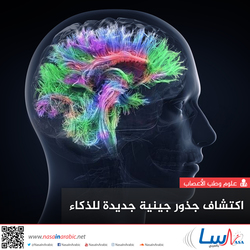 اكتشاف جذور جينية جديدة للذكاء