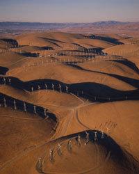 هل تحذر الطيور؟ مزرعة الرياح المثيرة للجدل في ألتامونت في كاليفورنيا. حقوق الصورة: Kevin Schafer/Riser/Getty Images
