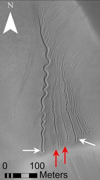 أخاديد خطية على كثب رملي في فوهة ماتارا على المريخ، وتشير الأسهم الحمراء والبيضاء إلى الحفر) حقوق الصورة NASA/JPL/University of Arizona