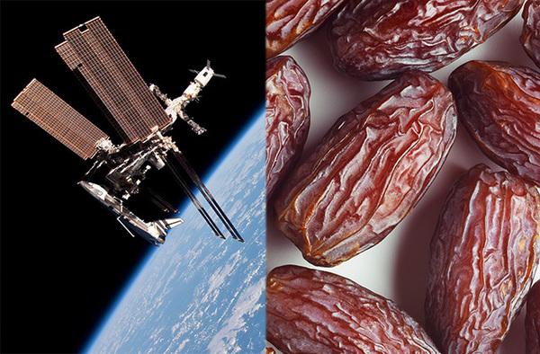 يملك البرقوق مجموعة من الفوائد الصحية، ولكنّه يمكن أن يكون أيضاً بطلاً غبر محتمل في المعركة ضد الأضرار الإشعاعية لعظام المسافرين في الفضاء لمدة طويلة.
