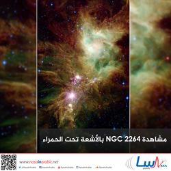 مشاهدة NGC 2264 بالأشعة تحت الحمراء