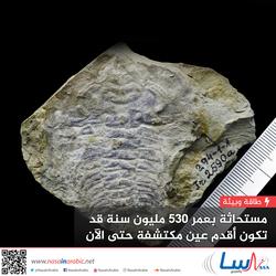 مستحاثة بعمر 530 مليون سنة قد تكون أقدم عين مكتشفة حتى الآن