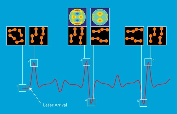 """دراسة UED لاصطفاف الجزيئات في غاز النيتروجين الذي يحدثُه الليزر. يظهر المنحني الأحمر كيفية توزيع التوجهات الجزيئية مع تغيرات الغاز بمرور الوقت. (1) جزيئة النيتروجين التي تتألف من ذرتي نيتروجين مرتبطتين بقوة، تتخذ اتجاهات عشوائية عادة عندما تتداعى في غاز. (2) باستخدام نبض ليزري قصير جداً، وجه العلماء الجزيئات وبذلك أصبحت جميعها في الاتجاه نفسه. (3 و 6) تستمر هذه الحالة المنظمة للحظة قصيرة فقط قبل أن تتشتت، ولكن الجزيئات الدائرية تعود دورياً إليها مشكلة """"صدى جزيئي"""" تعود فيه جزيئات النيتروجين للاصطفاف ثانية. أثناء هذه الأصداء، تبدل الجزيئات وضعها بسرعة من الاصطفاف في اتجاه واحد لتصطف في اتجاه آخر عمودي على الأول (3 و 4 ، 5 و 6). باستخدام أداة SLAC الجديدة، صور الباحثون للمرة الأولى الانتقال فائق السرعة (3 و 4 إشارات UED الظاهرة في الأعلى) بوقت حقيقي وتصميم ذري. (مختبر المسرع الوطني SLAC)."""