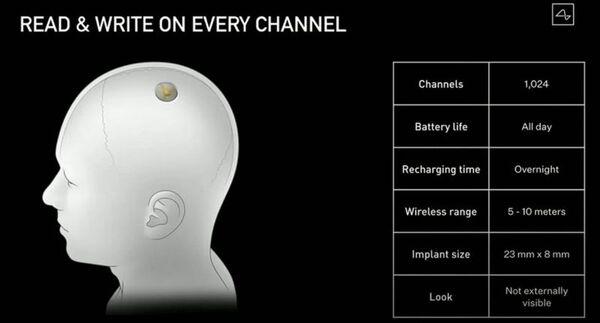 قال ماسك إن جهاز نيورالينك الأولي لديه نطاق كافٍ للاتصال بهاتف ذكي قريب عبر البلوتوث.