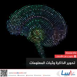 تحوير الذاكرة وثبات المعلومات