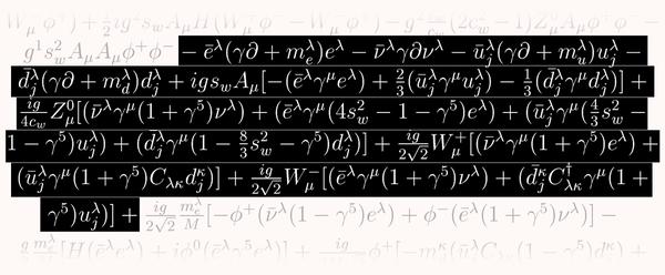 يصف هذا الجزء من المعادلة كيفية تفاعل جسيمات المادة الأساسية مع القوة الضعيفة