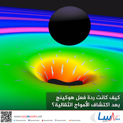 كيف كانت ردة فعل هوكينج بعد اكتشاف الأمواج الثقالية؟