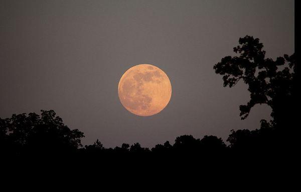 بدر مكتمل يطلع في سماء شمال غرب جورجيا في الثاني والعشرين من حزيران عام 2013. المصدر: ستيفين ران. Stephen Rahn