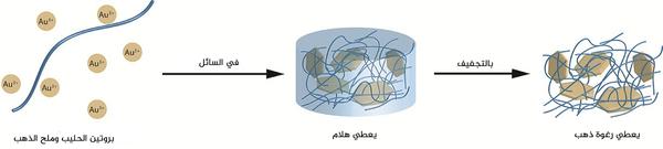 خيوط بروتين الحليب وملح الذهب هي المواد الأولية لرغوة الذهب. الملكية: Nyström G et al المواد المتقدمة 2015.