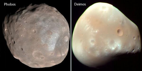 """تّسم القمران الضئيلان """"فوبوس"""" و""""ديموس"""" الظاهران في هاتين الصورتين اللتين التقطهما مستطلع المريخ المداري (Mars Reconnaissance Orbiter) بأشكال غير منتظمة، ويُرجّح أنهما كويكبان شاردان من حزام الكويكبات الرئيسي. حقوق الصورة: Nasa."""