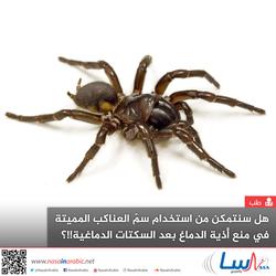 هل سنتمكن من استخدام سم العناكب المميتة في منع أذية الدماغ بعد السكتات الدماغية؟