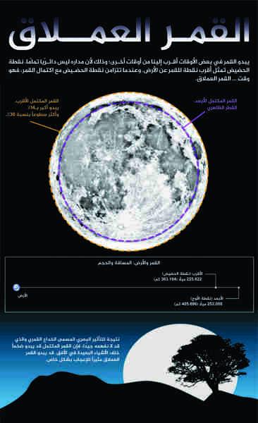 يمكن للقمر العملاق أن يظهر أكثر إشراقاً بـ 30% وأكبر بـ 14% من الأقمار الكاملة النموذجية. حقوق الصورة:Karl Tate/SPACE.com