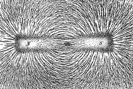 برادة الحديد المنثورة حول مغناطيس قضيبي تُرتب نفسها على طول خطوط الحقل