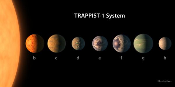 يبيّن هذا التصوّر الفني ما قد يبدو عليه كل كوكبٍ من كواكب نظام ترابيست-1 بناءً على البيانات المتوفرة عن أحجامها وكتلها ومسافاتها المدارية. Credits: NASA/JPL-Caltech