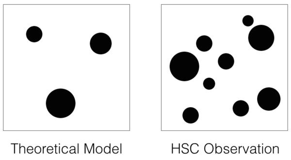 تظهر البيانات فائضًا واضحًا في المناطق المكثفة بالمادة المظلمة فوق النموذج النظري الأفضل حاليًا. في اليمين: مخطط يظهر مناطق المادة المظلمة عالية الكثافة المكتشفة في بيانات كاميرا Hyper Suprime-Cam. في اليسار: مخطط يظهر توقعات من النماذج النظرية الحالية. مصدر الصورة: NAOJ/مشروع HSC