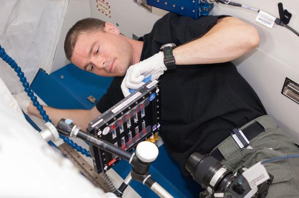 رائد الفضاء ريد وايزمان، يُجري إحدى جلساته مستخدمًا سبيكة التّجارب الغرويّة ثنائيّة المعادن C1 أثناء مهمّته على متن محطة الفضاء الدوليّة عام 2014.