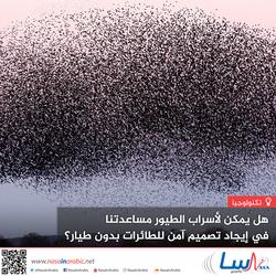 هل يمكن لأسراب الطيور مساعدتنا في إيجاد تصميم آمن للطائرات بدون طيار؟