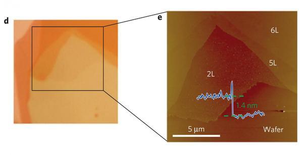 تُبدي الصورة أعلاه عينة من تيليوريد النيوبيوم. Credit: © J. Huetal/ Nature Physics.
