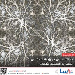 ماذا تعرف عن خوارزمية البحث عن المعمارية العصبية الأفضل؟