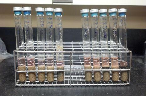 تحتوي هذه الأنابيب على مولدات الميثان، فضلًا عن مغذيات للنمو، ورمل وماء. وقد تمكنت من الصمود عند تعرضها لدرجات حرارة شبيهة بدرجات حرارة المريخ المتجمدة.   حقوق الصورة: Rebecca Mickol