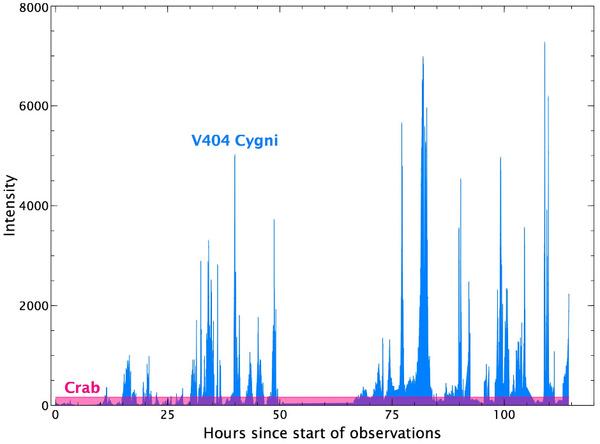 يُبين هذا الرسم البياني التباين في سطوع الأشعة السينية للنظام الثنائي للثقب الأسود V404 سيغني، والذي تم رصده بواسطة معدات IBIS/ISGRI الموجودة على متن مرصد أشعة غاما إنتيغرال التابع لوكالة الفضاء الأوروبية. أجري الرصد عند مستويات للطاقة تتراوح ما بين 20 و40 كيلو إلكترون فولط مقارنة مع سديم السرطان (المبين باللون الوردي). المصدر: Carlo Ferrigno, Integral Science Data Centre, Geneva, Switzerland/Jerome Rodriguez, Cea-Saclay, France/Marion Cadolle Bel, Max-Planck Computing and Data Facility, Garching Germany.