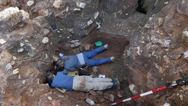 تم العثور على الحفرية في مقلع دريمولين بالقرب من جوهانسبرج. حقوق الصورة:LA TROBE UNIVERSITY