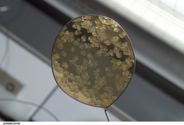 التشكيل البلوري ضمن حلقة قطرها 50 ميليمتراً، صورة ملتقطة على متن المهمة 6. تجرى أبحاث تشكيل البلورات منذ وجد الإنسان هناك نظراً لبيئة العمل الخاصة التي يعطيها غياب الجاذبية. الملكية: ناسا NASA.
