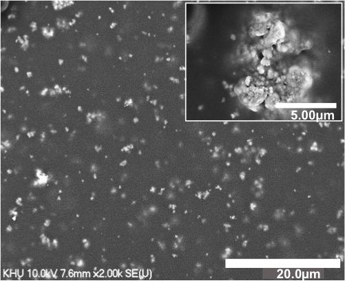 تُوضح هذه الصورة المجهرية الإلكترونية جسيمات فيريت البزموت النانوية المدفونة في فلم البولمير. حقوق الصورة: YoungPak Lee/ Hanyang University