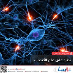 نظرة على علم الأعصاب