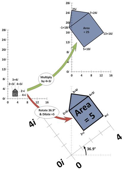 يتم إنتاج نفس التأثير من ضرب المتجهات العمودية للشكل بالعدد 4+3i، وتدوير الشكل بزاوية 36.9 درجة، وبتمديده من خلال ضربه بالعدد 5. حقوق الصورة: Robert J. Coolman