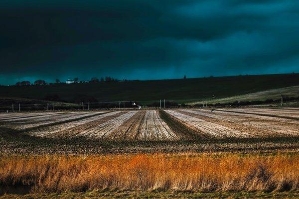 أظهرت أبحاث كل من ويتي وزنغ أن رطوبة التربة في الصباح يمكن أن تؤثر على تراكمات المطر في فترة ما بعد الظهيرة فوق السهول الكبرى الجنوبية خلال الموسم الحار، ويختلف التأثير باختلاف الظروف الجوية. حقوق الصورة: جامعة أريزونا University of Arizona