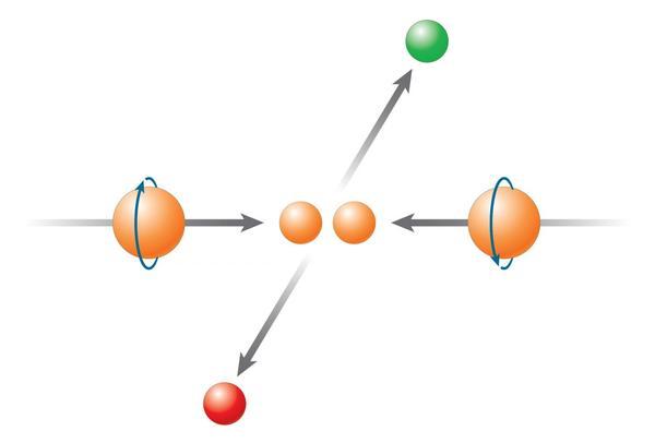 """RHIC هو الجهاز الوحيد في العالم التي يمكن أن يصادم البروتونات مع جعل الدوران spin في اتجاه معين، قياس الاختلافات في الجسيمات عندما يكون الدوران في شعاعين يشيران إلى بعضهما البعض -كما هو موضح- مقابل عندما يشيران إلى نفس الاتجاه، الاصطدام """"رأس"""" إلى """"ذيل""""، يمكن أن يساعد العلماء على استخلاص مساهمة الغلوونات."""