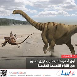 أول أحفورة لديناصور طويل العنق في القارة القطبية الجنوبية