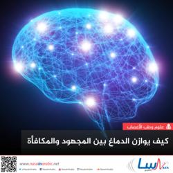 كيف يوازن الدماغ بين المجهود والمكافأة