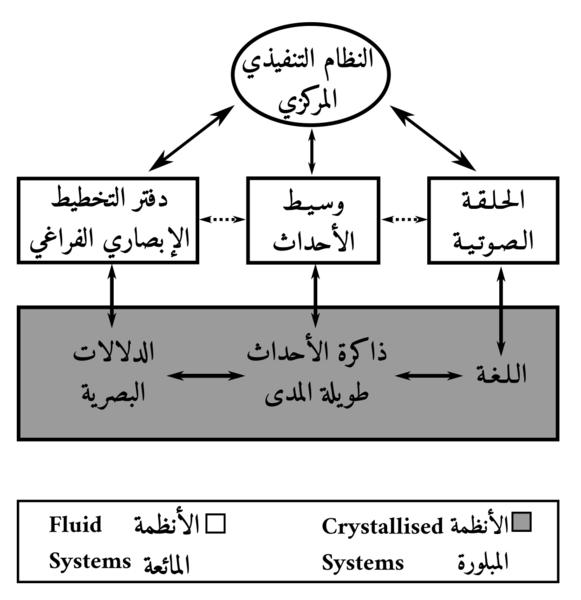 نموذج للذاكرة العاملة