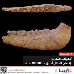 أحفورات المغرب: الإنسان العاقل أسبق بـ 100000 سنة