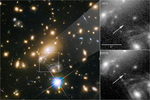 في يسار الصورة يظهر الحشد المجري MACS J1149+2223 وفي يمينها تظهر مقارنة بين موقع النجم الذي رُصد سنة 2016 ونفس الموقع الذي رُصد سنة 2011 ولم يظهر فيه النجم .حقوق الصورة: NASA/ ESA/ P.Kelly_University of Minnesota