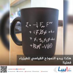 هكذا يبدو النموذج القياسي للفيزياء فعليا!