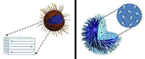 تحتاج جسيمات أكسيد الحديد النانوية ذات البنية الداخلية المُتراصّة جيداً (على اليسار) إلى حقلٍ مغناطيسي أقوى من المتوقع حتى تسخن، بينما تسخن تلك الجسيمات الأكثر عشوائية بسرعةٍ أكبر حتى في ظل حقلٍ ضعيف. بوسع النتائج، التي جاءت معاكسة للتوقعات، أن تؤثر في اختيارنا للجسيمات التي ستعالج أنواعا معينة من السرطان. مصدر الصورة: NIST
