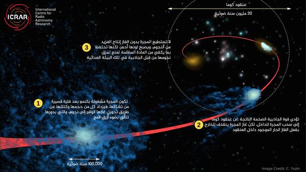"""يُظهر هذا الرسم التخيلي لعملية """"الإخماد"""" مجرةً زرقاء اعتيادية (من المجرات التي تتشكل فيها النجوم) خسرت غازاتها لدى انضمامها إلى عنقود كوما في مرحلة مبكرة من تكوينها. المصدر: Cameron Yozin, ICRAR/UWA."""
