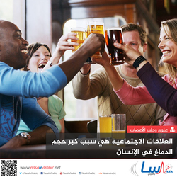 العلاقات الاجتماعية هي سبب كبر حجم الدماغ في الإنسان