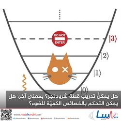 هل يمكنُ تدريب قطة شرودنجر؟ بمعنى آخر؛ هل يمكن التحكم بالخصائص الكميّة للضوء؟