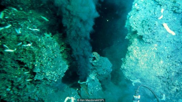الفتحات الحرارية المائية هي موطن لنظم بيئية متنوعة.
