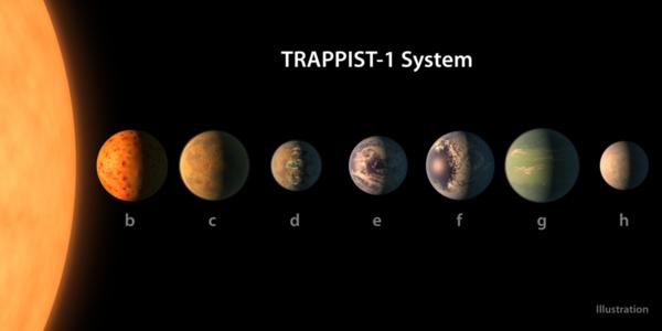 يظهر هذا الرسم التخيلي ما قد تكون عليه كواكب النظام TRAPPIST-1، وذلك بناء على البيانات المتوفرة حول أحجامها وكتلتها والمسافات المدارية. Credits: NASA/JPL-Caltech